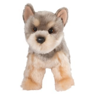 Puddin Yorkie (Best Toys For Yorkie Puppies)