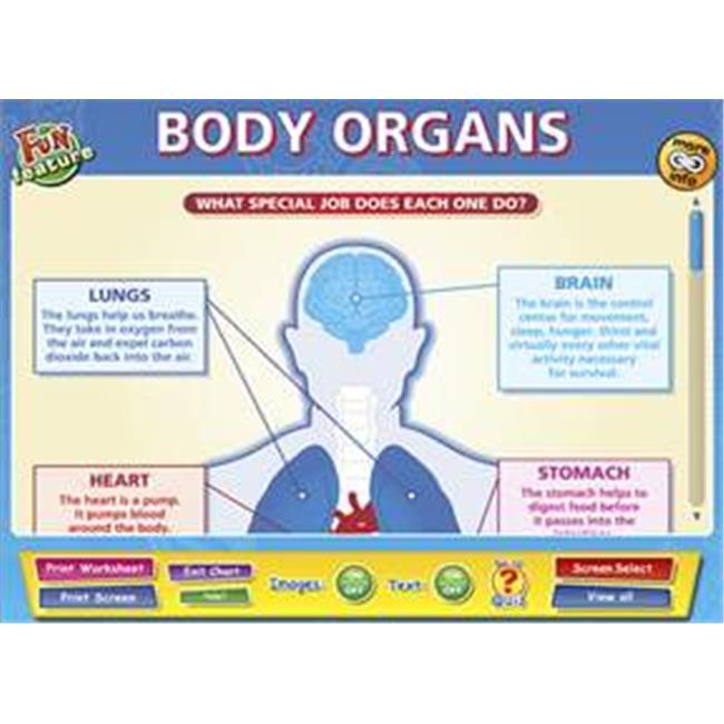 Daydream Education DD-SC-5-03 Body Organs Interactive Software , Single User