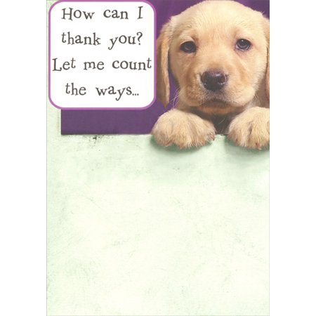 Recycled Paper Greetings Lab Pup Thank You Funny Dog Thank You Card](Funny Halloween Greeting Cards)