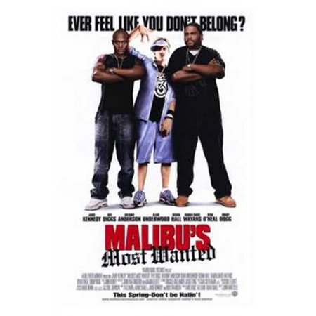 Posterazzi MOV197983 Malibus Most Wanted Movie Poster - 11 x 17 in. - image 1 of 1