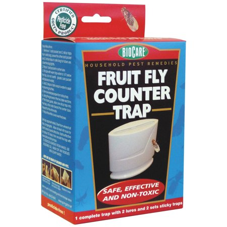 Bio Care Naturals 787 Fruit Fly-Counter Trap - Walmart.com