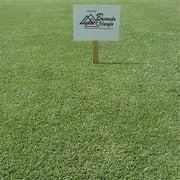 Best Bermuda Grass Seeds - Triangle Bermuda Grass Seed - 5 Lbs Review