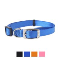 Vibrant Life Solid Nylon Dog Collar with Metal Clasp