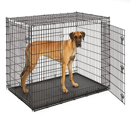 midwest homes for pets solutions series 54 double