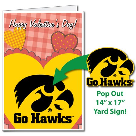University of Iowa Hawkeyes 2