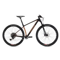 2020 Viathon M.1 X01 Carbon Eagle Mountain Bike