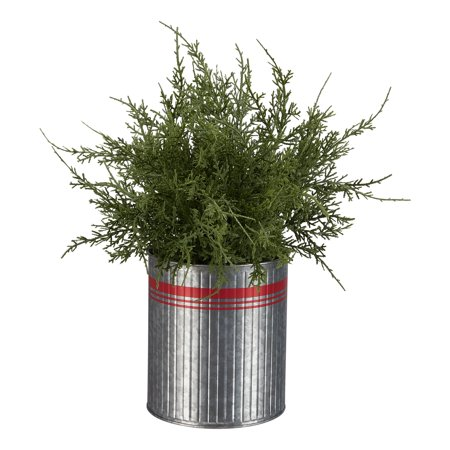 Holiday Time Greenery Tree with Red Striped Metal Bucket Christmas Decoration, 14