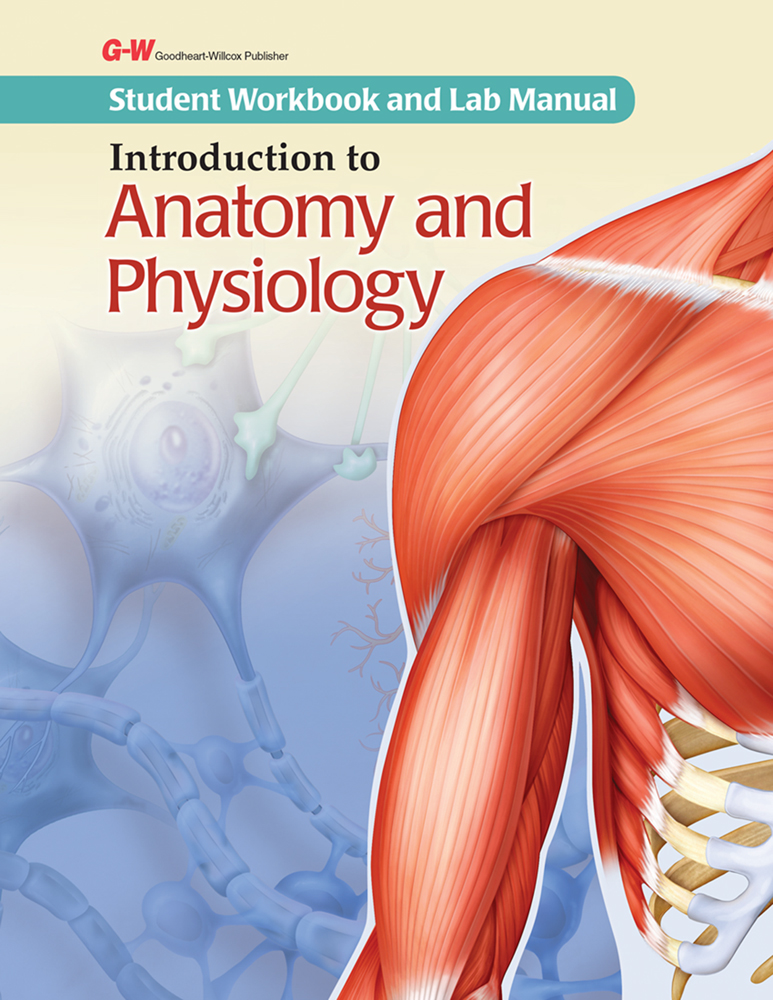introduction to anatomy and physiology marieb Run easy notecards as an applearn how  introduction to medical terminology  human anatomy & physiology.