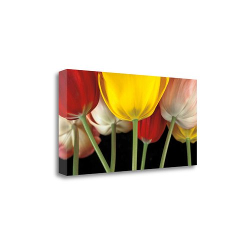 Sunshine Tulips Graphic Art Print On Wrapped Canvas Walmart Com Walmart Com