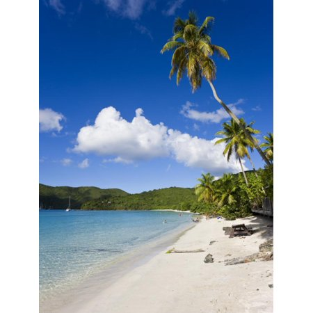 - Cinnamon Bay Beach and Palms, St. John, U.S. Virgin Islands, West Indies, Caribbean Print Wall Art By Gavin Hellier