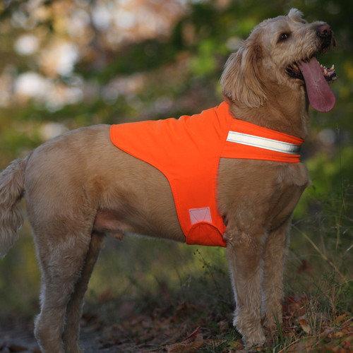 Safety Dog Vest