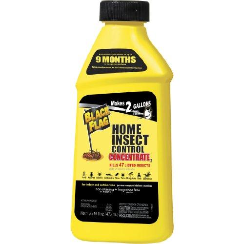 Black Flag Extreme Home Insect Control Concentrate, 16-oz - Walmart.com