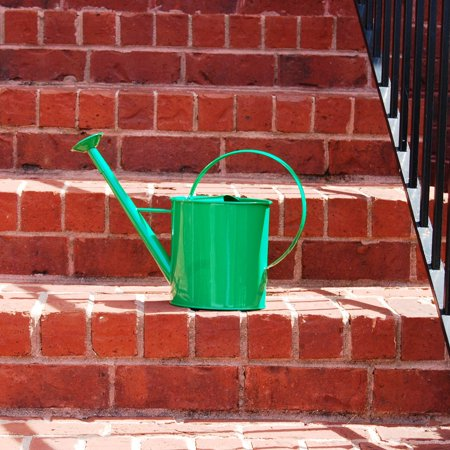 Austram 1 Gallon Metal Watering Can with Long Spout