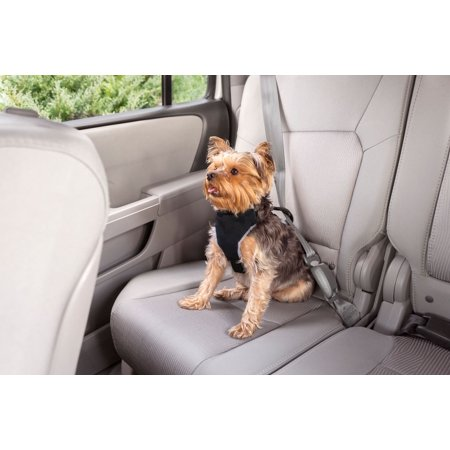 - Premier Pet Car Safety Harness Small Dog