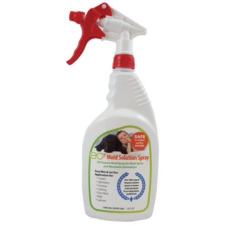 Micro Balance EC3 Mold Spray-All-Natural Botanical Surfactant, Removes Mold Spores and Mycotoxins, Safe for All Materials, Surfaces and Fabrics-No Harmful Chemicals, 32 FL (Best Way To Remove Moles At Home)