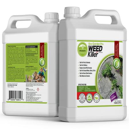 Image of ECO GARDEN PRO - Organic Vinegar Weed Killer Kid Safe Pet Safe Clover Killer For Lawns Moss Killer Green Grass & Poison Ivy Killer Spray Ready Glyphosate FREE Herbicide (1 Gallon)