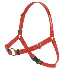 SENSE-ible No-Pull Dog Harness - Red Medium by Softouch ()