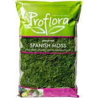 Spanish Moss True Green, 16 Oz.
