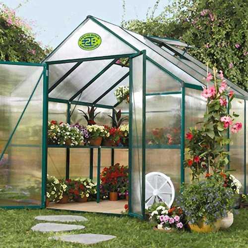STC EasyGrow 8 x 8-Foot Greenhouse Kit