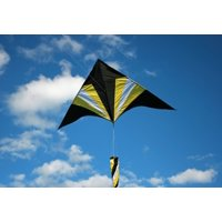 Flying Arrow Kite Delta Shape with Flying Line and Handle 6 Ft Wide, Easy to Fly