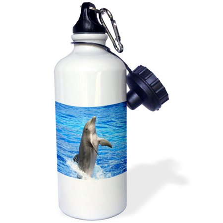3dRose Dolphin diving out of the water at Oceanographic Aquarium in Valencia, Spain, Sports Water Bottle, 21oz