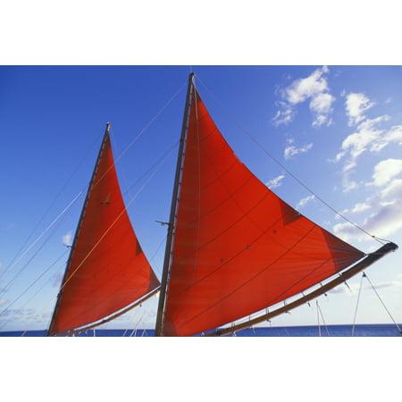 Hawaii Oahu Waikiki Bright Red Sails Of Aikane Catamaran Stretched Canvas - Chris Abraham  Design Pics (19 x