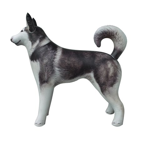 Inflatable Husky Dog Siberian Alaskan Malamute pet animal 32 inch Long for party decoration gift pool toy by Jet Creations AN-HUSKY - Pool Decorations
