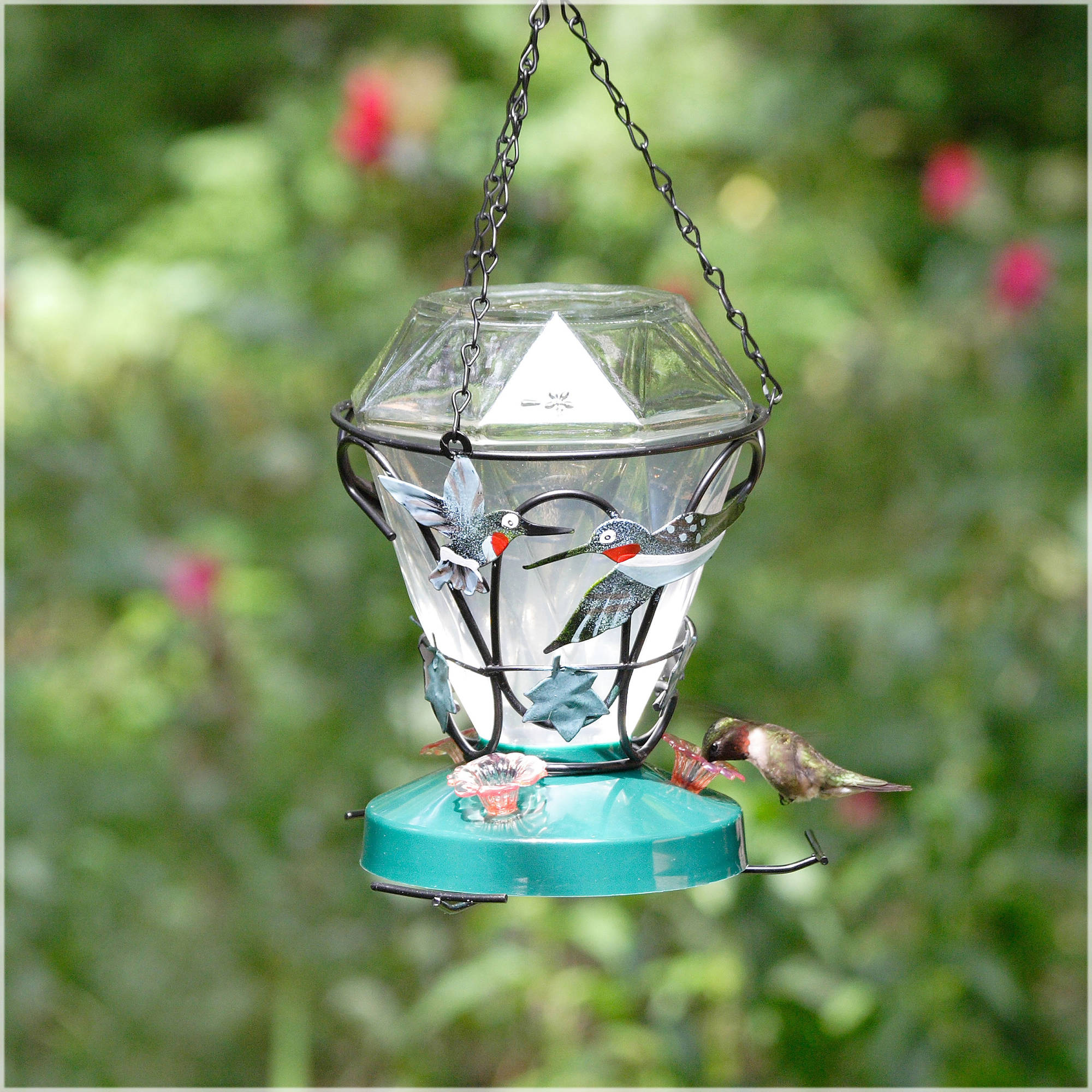 deck hummingbird pdx feeder double plastic feeders pet perky outdoor decorative wayfair