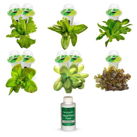 Image of 9-Pod Heirloom Salad Greens