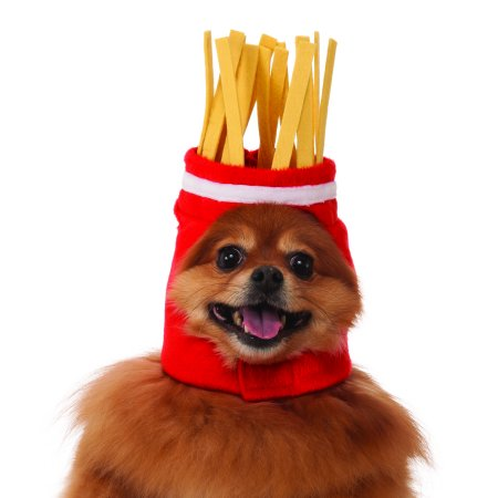 Rubies Costume Co. French Fries Pet Hat