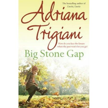 Big Stone Gap. Adriana Trigiani