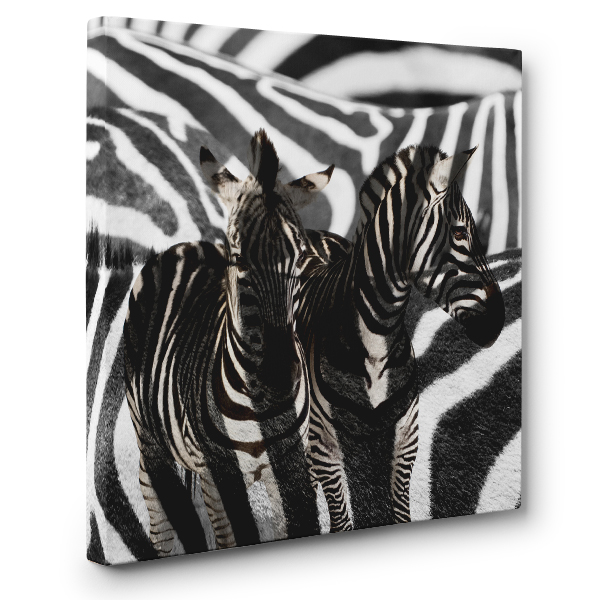 Zebra CANVAS Wall Art Home Decor