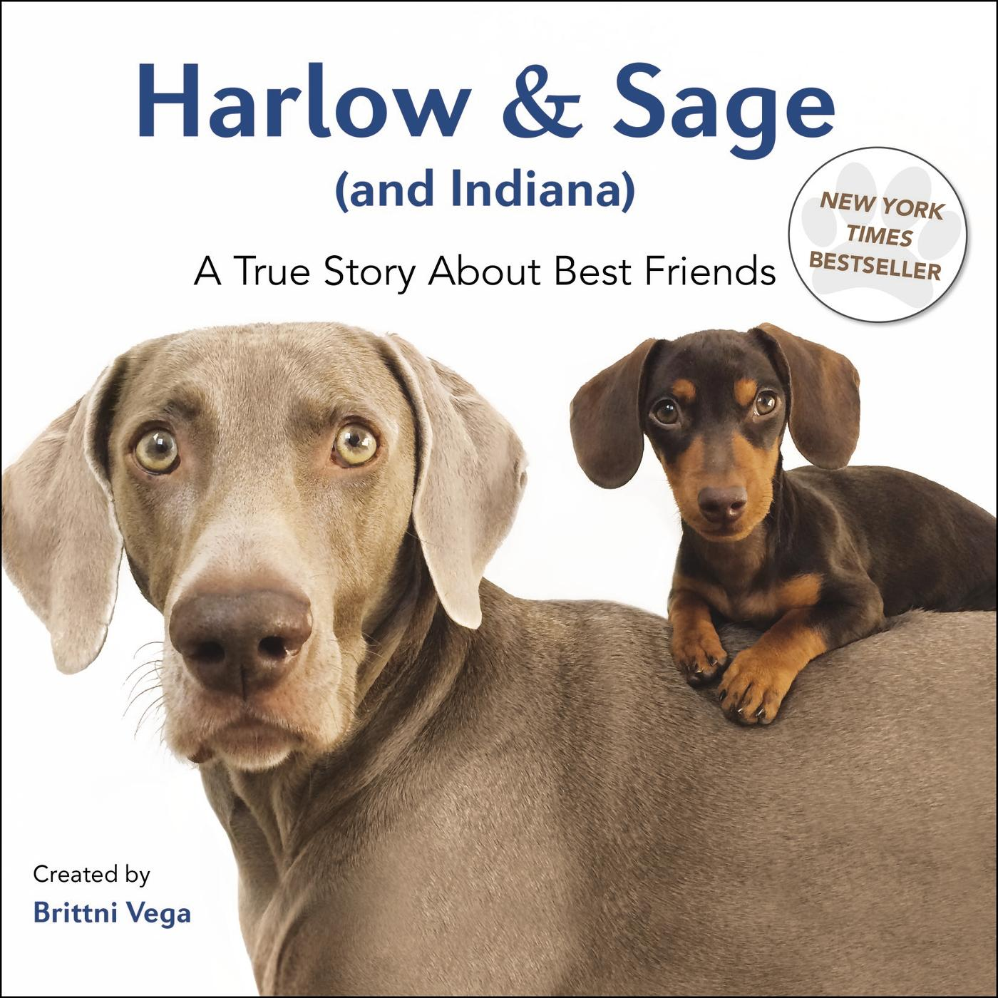 Harlow & Sage (and Indiana): A True Story about Best Friends (Hardcover)