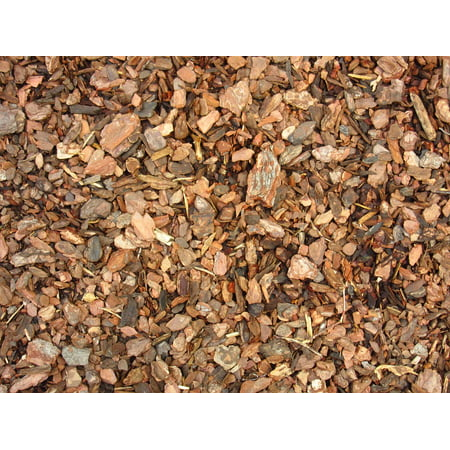 Canvas Print Texture Crushed Snippets Bark Mulch Ground Stretched Canvas 10 x 14
