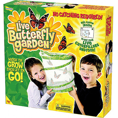 As Seen on TV Butterfly Garden by Insect Lore