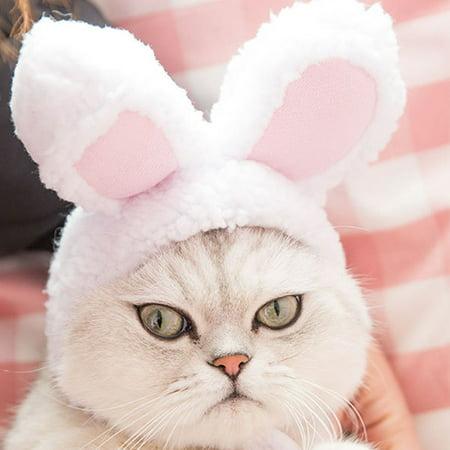 Dog Costumes Teddy Bear (Cute Pet Rabbit Ear Shape Headgear Hat Costume Cosplay for Dog Teddy Bichon)