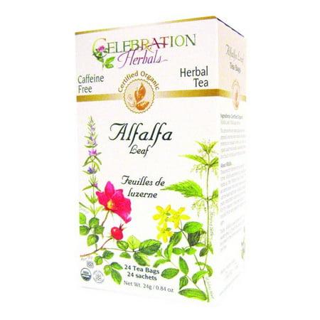 Celebration Herbals thé à base de plantes bio sans caféine Alfalfa feuilles Sacs 24 thé