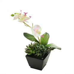 13 Artificial White  Pink and Green Orchid with Succulent Plants in a Decorative Square Black Pot