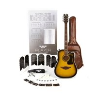 "Keith Urban ""PLAYER"" Tour Guitar 50-piece Package Brazilian Burst - Left"