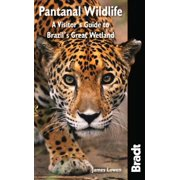 Bradt Pantanal Wildlife : A Visitor's Guide to Brazil's Great Wetland - Paperback