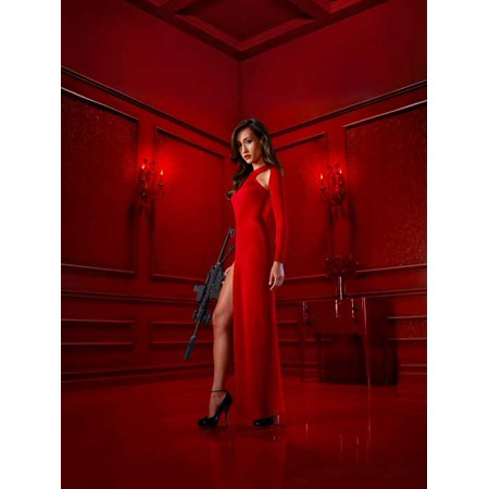 Nikita (2010) 11x17 TV Poster
