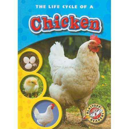 Life Cycle Of Chicken (The Life Cycle of a Chicken)