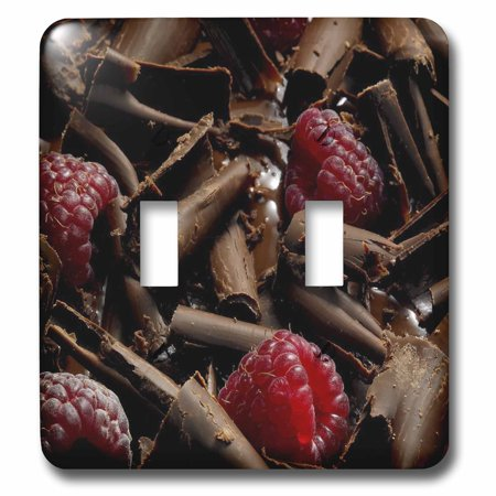 Double Raspberry - 3dRose Chocolate and Raspberries - Double Toggle Switch (lsp_35883_2)