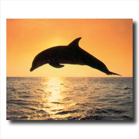 Dolphin Ocean Sunset Fish Wall Picture Art Print Ocean Sunset Pictures