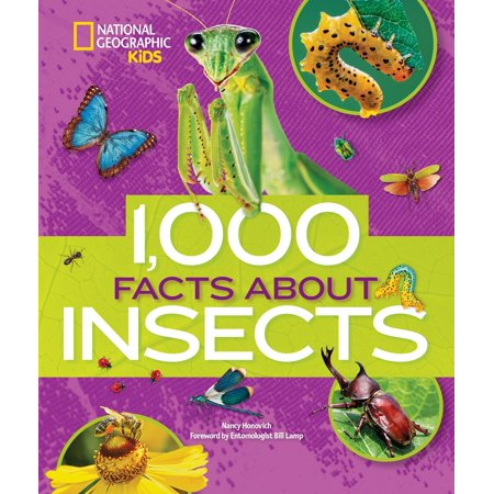 1,000 Facts About Insects (Facts About Halloween Safety)