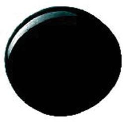 Martha Stewart High Gloss Acrylic Craft Paint 2oz-Beetle Black