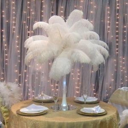 Diy Halloween Bedroom Decorations (10 Pcs White Ostrich Feather Clearance, Pack of 10 12-14inch Natural Feathers for DIY Craft Wedding Home Party Decorations, Great Gift for Girls Bedroom and Dorm Room Home Decor, White,)