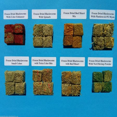 Aquatic Foods Freeze Dried California Blackworms, Assorted 8 Type 32 Cube Sampler Pack….15-20 - Assorted Types