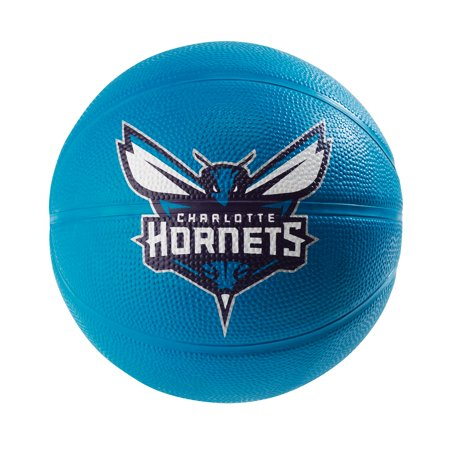 Spalding NBA Charlotte Hornets Team Mini