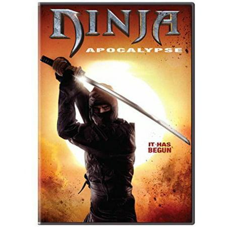 Ninja Apocalypse - Ninja Lloyd